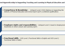 Advanced Level Apprenticeship in Supporting Teaching and Learning in Physical Education and School Sport